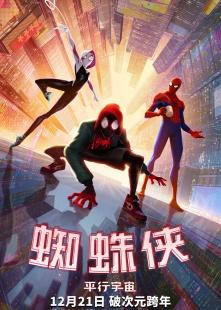 蜘蛛侠:平行宇宙海报图片