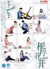 栀子花开2017海报图片