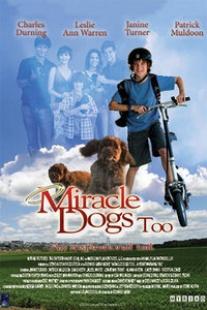 天降神犬2海报图片