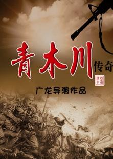 青木川传奇海报图片