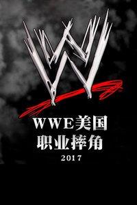 WWE美国职业摔角 2017海报图片