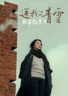 《送我上青云》腾讯视频独家纪录片海报图片