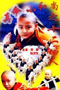 真命小和尚之十二铜人海报图片
