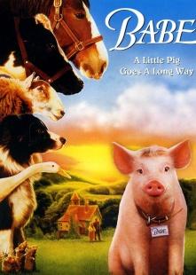 小猪宝贝海报图片