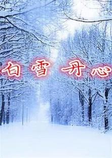 白雪丹心海报图片