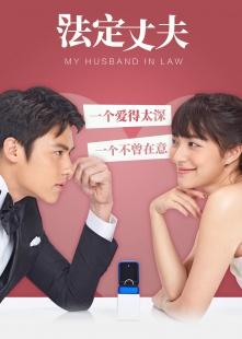 法定丈夫 普通话版海报图片