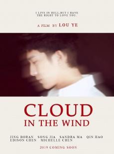 风中有朵雨做的云海报图片